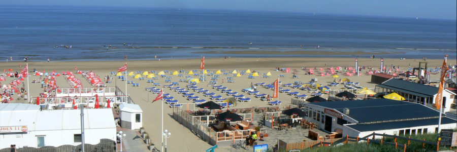 Zandvoort - Beach of Amssterdam - Your Host and Guide