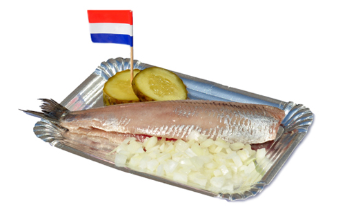 Haring a famours Dutch raw fish. Eat as the Dutch locals eat. Your Host & Guide